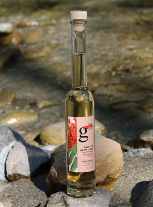 Liquor da puma caura cun mèl d'aviuls / Vogelbeeren-Likör mit Honig